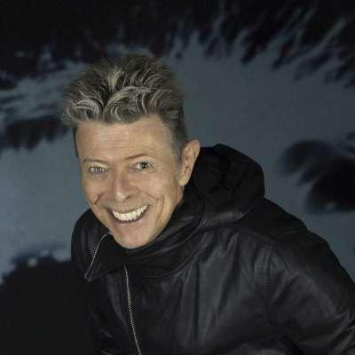 Hommage à David Bowie ce grand artiste multi-facettes aux coiffures délurées
