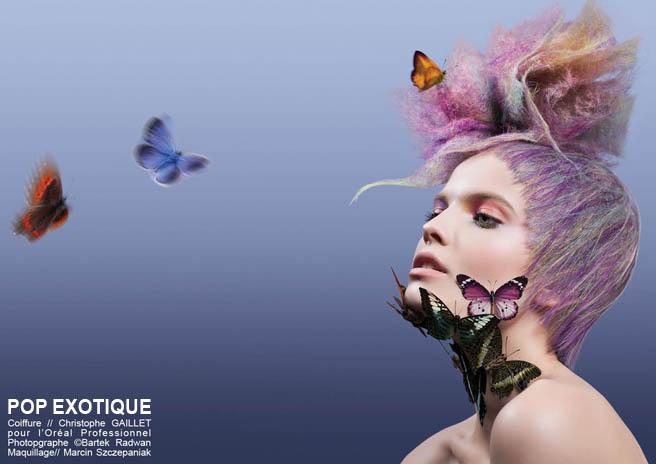 Collection Anamorphose - Christophe GAILLET- POP EXOTIQUE